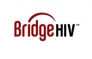 bridgehiv.jpg